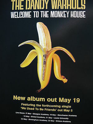 The Dandy Warhols - Magazine Cutting (Full Page Advert) (Ref Md)