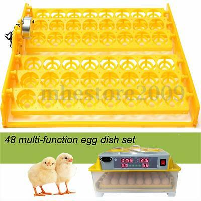 48 Egg Poultry Chicken Incubator Turner Tray Turning Motor Temperature Control