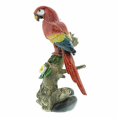 Multicoloured Parrot Sitting on a Branch