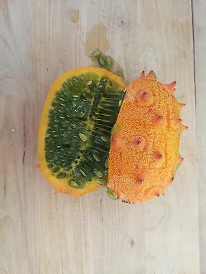 Kiwano Organic Jelly Melon Cucumber 25 Seeds - Cucumis - Vegetable