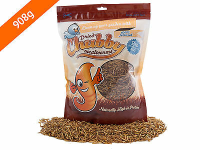 908g Chubby Dried Mealworms for Birds Reptiles Poultry Sugar Gliders Fish 2lbs