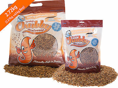 2.27Kg Chubby Dried Mealworms for Birds Reptiles Poultry Sugar Gliders Fish 6lbs