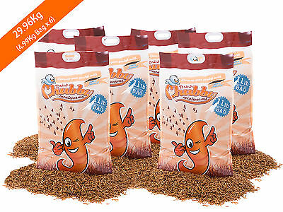 29.96Kg Chubby Dried Mealworms for Birds Reptiles Poultry koi Fish 66lb