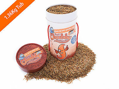 1.36kg Tub Chubby Dried Mealworms for Birds Reptiles Poultry Fish 3lbs