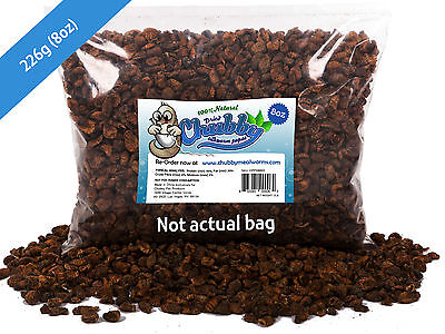 226g Chubby Dried Silkworm Pupae for Koi Pond Fish Birds Reptiles Poultry 8oz
