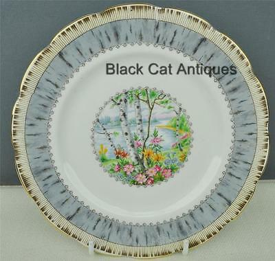 Lovely Royal Albert Silver Birch Bone China Bread & Butter Plate Made In England