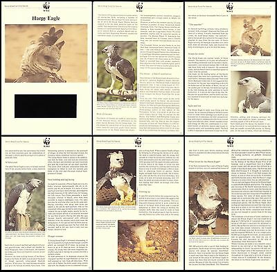 Guyana WWF Harpy Eagle Info pages