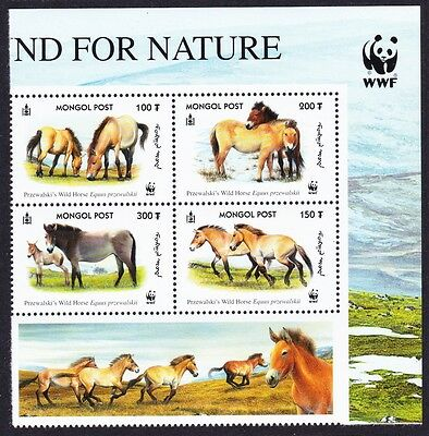 Mongolia WWF Przewalski's Horse Top Right Block of 4 with WWF Logo SG#2861/64