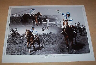 Bob Champion - Signed Aldaniti 16x12 Montage Photo