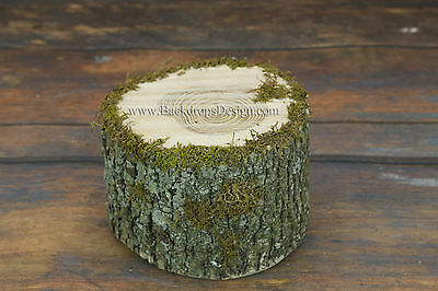 Newborn log bed stump photo prop baby photography  wood bed hand made