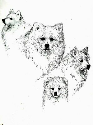 Dogs, Dogs and More Dogs / AMERICAN ESCIMO Notecards SEALED Super Sale!  LOOK!