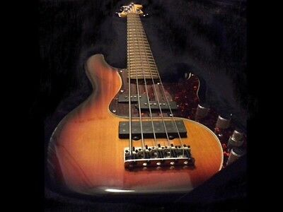 Fender American Deluxe 5 string Precision Bass Active EQ