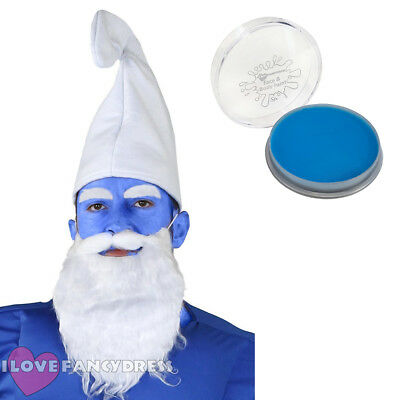 Gnome Hat Blue Face Paint Beard   Eyebrows 80S Tv Character Fancy Dress  Costume fa9a95568