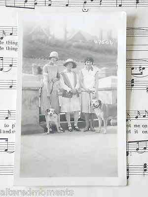 A Vintage Postcard - 3 Ladies With 2 Lovely Dogs, Bridlington Seafront, Fashion