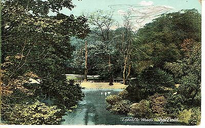 "PPC of "" Endcliff Woods , Sheffield "" Posted 1906"