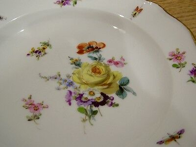 Genuine Meissen Floral Cabinet Plate Hand Painted Insects Moths Antique Gilded