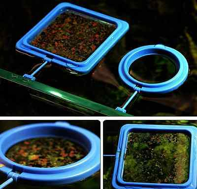 Aquarium Fish Tank Feeding Ring Floating Food Tray Feeder with Suction Cup US