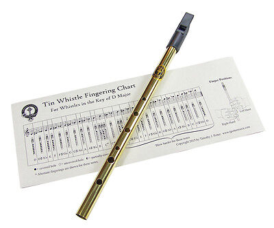 Tin Penny Whistle - Brass, Key of D - Timothy J. Potter Music Co. Made in USA