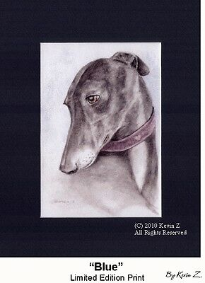 Greyhound Whippet Blue Limited Edition Signed Art Print NEW Kevin Z Arttogo