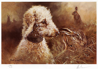 BEDLINGTON TERRIER DOG FINE ART LIMITED EDITION PRINT - by the late Mick Cawston