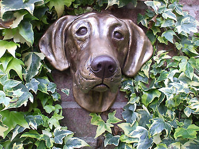 Big Bronzed German Shorthaired Pointer Dogs Head  Stone Wall Sculpture
