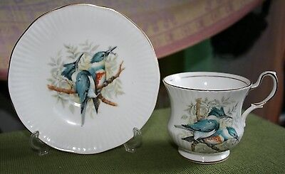 Queens bone china Birds of America cup and saucer