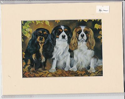 """8"""" X 6"""" MOUNTED  LITHOGRAPH PRINT of THREE CAVALIER K CHARLES SPANIELS"""