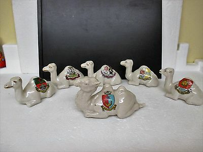 A Camel Train Of 6 Resting Crested China Camels