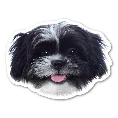 (Black and White) Shih Tzu Magnet
