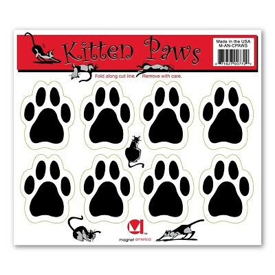 Kitten Paws Pack Magnet