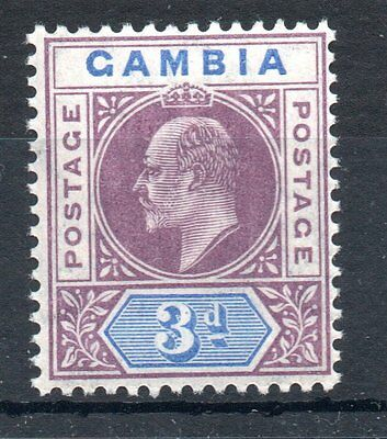 Gambia 1904 sg61 m/m