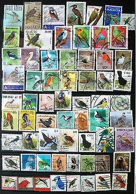 Great Collection Of Used Stamps Showing Birds, Bird Thematics.