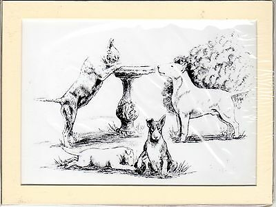 "MOUNTED 8"" x 6"" PENCIL DRAWING PRINT of  the ENGLISH  BULL TERRIER STUDY DOG"