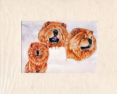 """8"""" X 10"""" MOUNTED OIL PAINTING PRINT of A CHOW CHOW   DOG STUDY"""