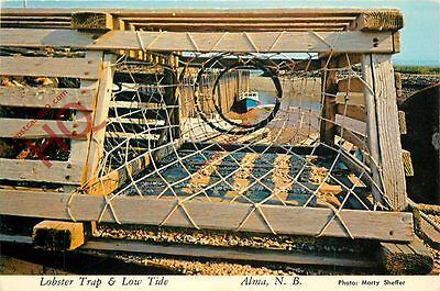 Postcard: Lobster Trap And Low Tide At Alma