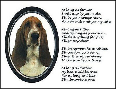"""Beautiful BASSET HOUND print """"AS LONG AS FOREVER"""" photo sign art poem NEW!"""