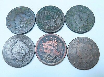 (6) Coronet Head + Braided Hair Large Cent Lot // 6 Coins // (LCL29)