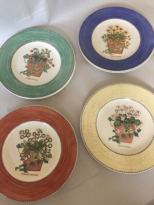 Wedgwood Sarah's Garden * 4 SALAD PLATES * Queen's Ware - 4 Colors
