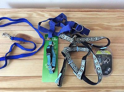 Various Dog Harnessess, Dog Collar And Lead