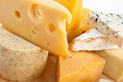 Home cheese making kit  easy fun make 40 pounds free recipes all types