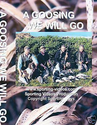 A Goosing We Will Go -Inland Goose Shooting/wildfowling