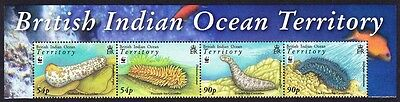 BIOT WWF Sea Cucumbers Top strip with Name of the Territory SG#392/95 SC#361-64