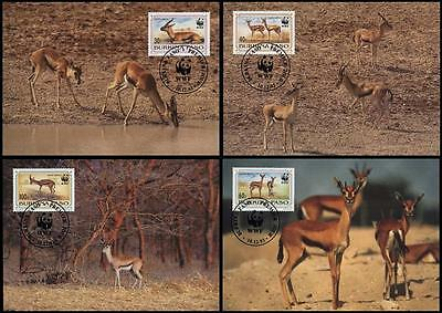Burkina Faso WWF Red-fronted Gazelle 4 official Maxicards
