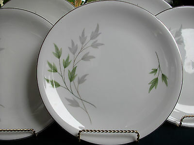 SHELLEY EVERGREEN (#13892) c.1950's- DINNER PLATE(s)- EXCELLENT! SILVER TRIM!