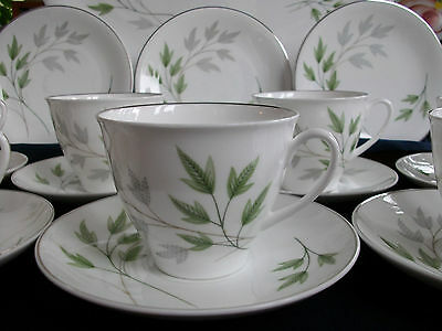 SHELLEY EVERGREEN (#13892) c.1950's- CUP & SAUCER (s)- EXCELLENT! SILVER TRIM!
