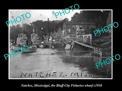 Old Large Historic Photo Of Natchez Mississippi, Bluff City Fisheries Wharf 1910