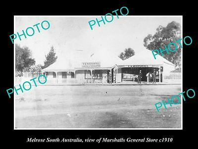 Old Large Historic Photo Of Melrose South Australia, The General Store 1910