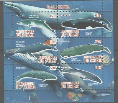Bloc Sheet Baleines Whales  Neuf MNH ** Tchad 2011  Private local