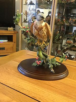 """Country Artists """"Kestrel with May Berries"""""""