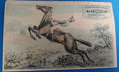 Antique Vintage Tea Trade Card Equestrian Advertising horse racing gambling